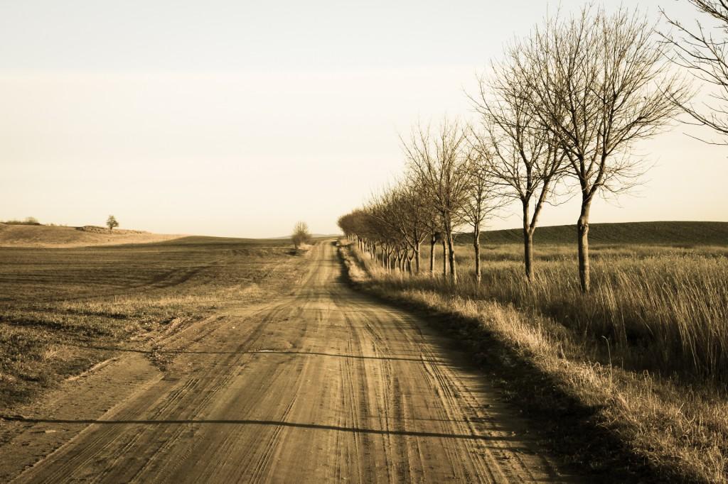 Weg in der Uckermark